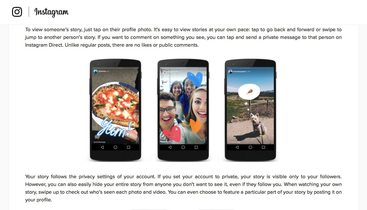 Instagram Stories for Ecommerce Businesses Example